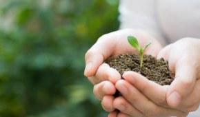 Fondo para el Medio Ambiente Mundial aprueba US$52 millones para Colombia